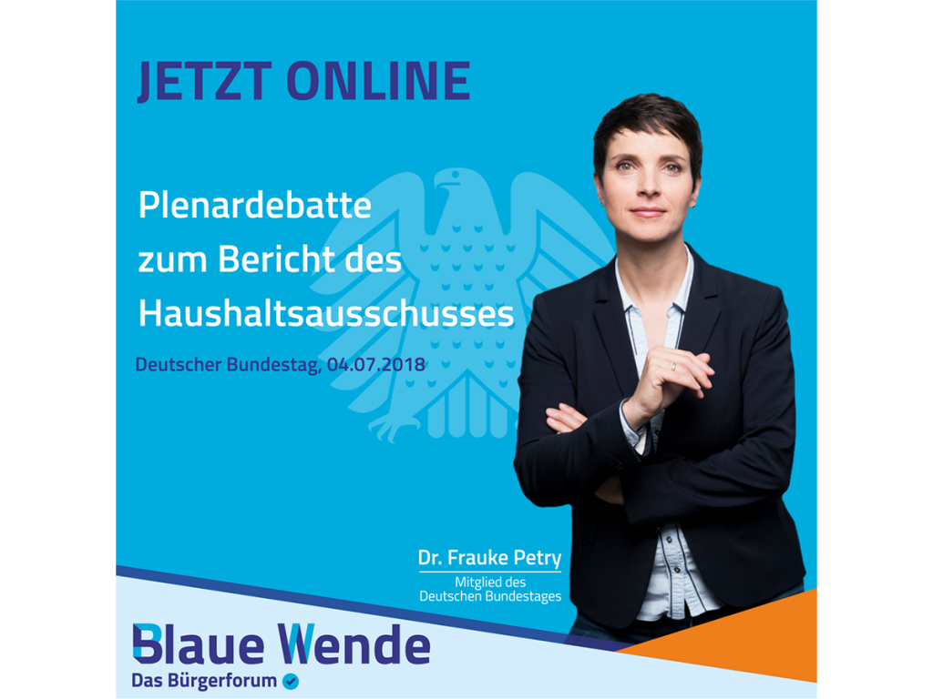20180704_Petry Haushalt_Etat Bundeskanzleramt