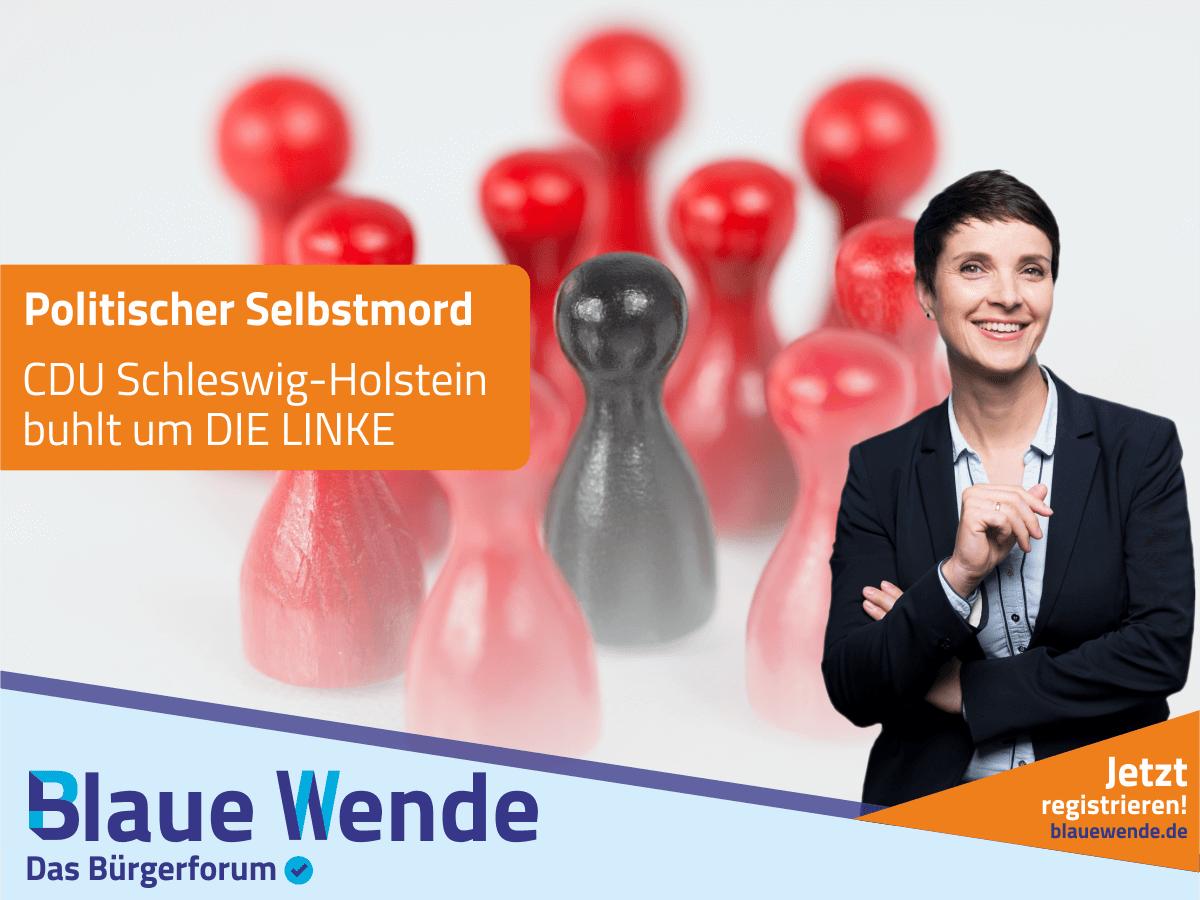 20180812_FRauke Petry_CDU und Linke